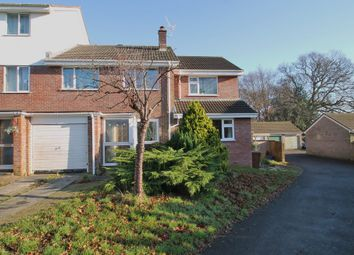 Thumbnail 4 bed end terrace house for sale in Deer Park, Ivybridge