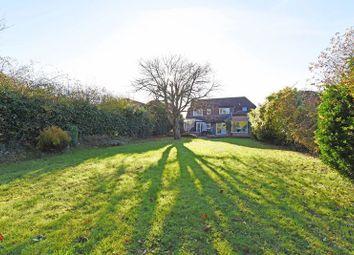 Thumbnail 4 bedroom detached house for sale in Hatch Lane, Old Basing, Basingstoke