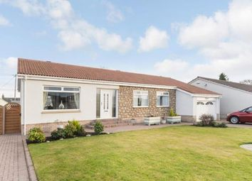 Thumbnail 3 bed bungalow for sale in Beechwood Drive, Stonehouse, Larkhall, South Lanarkshire