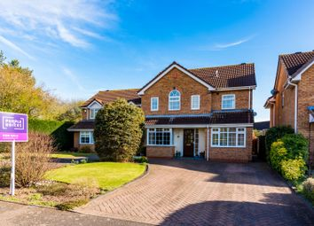 Thumbnail 4 bed detached house for sale in Hampshire Close, Tamworth