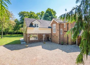 Thumbnail 5 bed detached house for sale in Risby, Bury St Edmunds, Suffolk