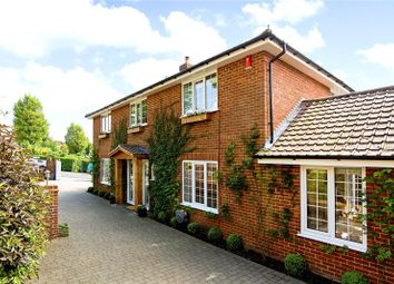 Thumbnail 4 bed detached house for sale in Woodruff Avenue, Hove, East Sussex