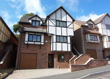 Thumbnail 4 bed detached house to rent in Meadow Walk, Chepstow, Monmouthshire