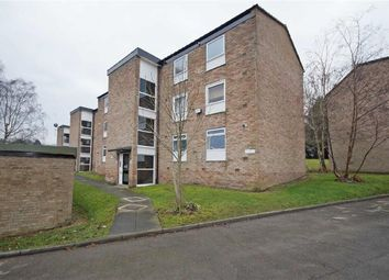 Thumbnail 2 bedroom flat to rent in Hampsthwaite Road, Harrogate, North Yorkshire