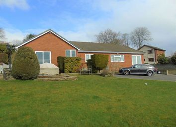 Thumbnail 4 bed detached bungalow for sale in Llethri Road, Swiss Valley, Llanelli