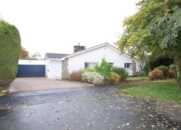 Thumbnail 4 bed bungalow to rent in Inchkeith, Glasgow