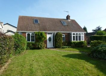 Thumbnail 4 bed bungalow to rent in Old Mill Lane, Whitton, Scunthorpe