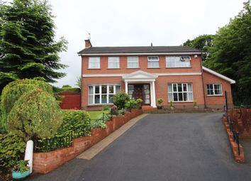Thumbnail 4 bed detached house for sale in Richmond Court, Lisburn