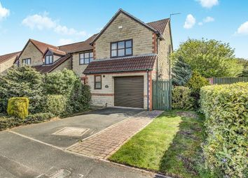 Thumbnail Detached house for sale in Beech Avenue, Cramlington