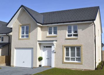 "Thumbnail 4 bedroom detached house for sale in ""Craigievar"" at Scotstoun Avenue, South Queensferry, South Queensferry"