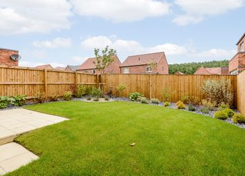 Thumbnail 4 bed detached house for sale in Wellow Road, Ollerton, Newark