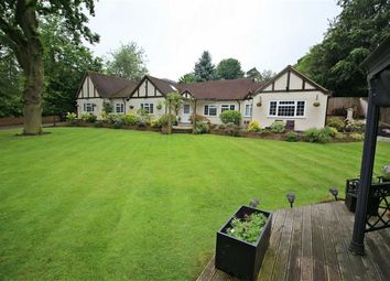 Thumbnail 5 bed detached bungalow for sale in Wendover Drive, Welwyn, Welwyn, Hertfordshire