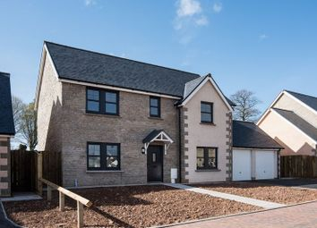 Thumbnail 4 bedroom detached house for sale in Plot 26, Peelwalls Meadows, Eyemouth