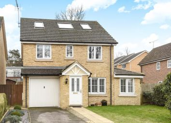 Thumbnail 5 bed detached house for sale in Porthallow Close, Orpington