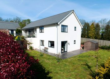 Thumbnail 5 bed detached house for sale in Edginswell Lane, Torquay
