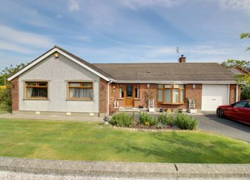 Thumbnail 4 bed detached bungalow for sale in Hillside, Portavogie