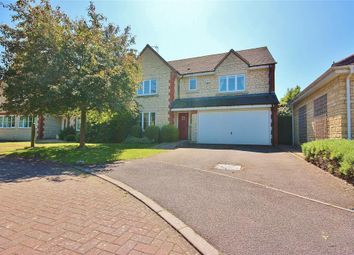 Thumbnail 4 bed detached house to rent in Mawkes Close, Stanford In The Vale, Faringdon