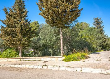 Thumbnail Land for sale in 07400, Alcudia / Bonaire, Spain