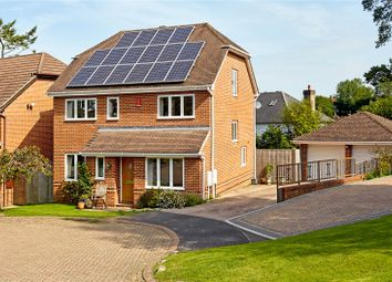 Thumbnail 5 bed detached house for sale in Ward Close, Wadhurst, East Sussex