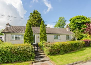 Thumbnail 3 bed bungalow for sale in Drumaknockan Road, Hillsborough