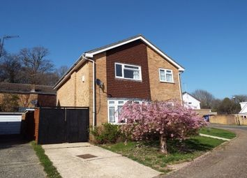 Thumbnail 4 bed property to rent in Fountains Close, Gossops Green, Crawley