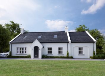 Thumbnail 4 bedroom detached house for sale in Vestry Road, Ballygowan