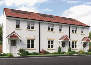 "Thumbnail 3 bedroom mews house for sale in ""Urquhart Mid"" at Brora Crescent, Hamilton"