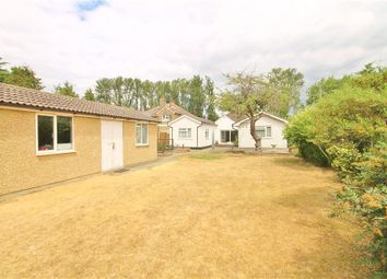 Thumbnail 4 bed detached bungalow for sale in Wraysbury Road, Staines-Upon-Thames, Surrey