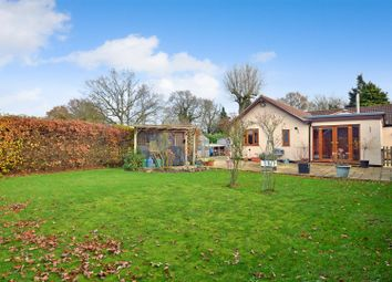 Thumbnail 4 bed detached bungalow for sale in Watton Road, Little Ellingham, Attleborough