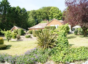 Thumbnail 4 bed detached bungalow for sale in Dinton Road, Salisbury