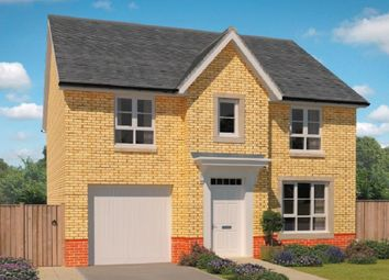 "Thumbnail 4 bedroom detached house for sale in ""Carrick"" at Ravenscliff Road, Motherwell"