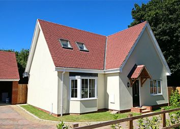 Thumbnail 4 bedroom detached house for sale in Dunmow Road, Takeley, Bishop's Stortford, Essex