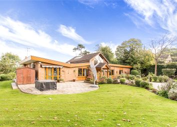 Thumbnail 5 bed detached bungalow for sale in Elstree Village, Hertfordshire
