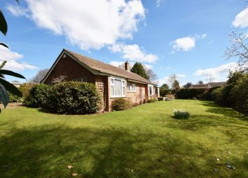 Thumbnail 3 bed bungalow for sale in St Raphaels, Buxted