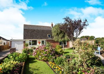 Thumbnail 3 bed detached house for sale in Homefield, Shaftesbury