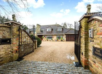 Thumbnail 6 bed detached house to rent in St Leonards Hill, Windsor, Berkshire