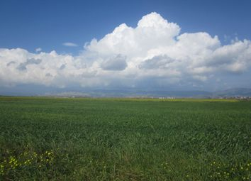Thumbnail Land for sale in Iskele, Cyprus