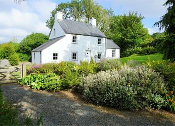 Thumbnail 3 bedroom detached house for sale in Cynefin, College Square, Newport, Pembrokeshire