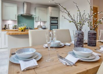 Thumbnail 4 bedroom detached house for sale in High Street, Shirrell Heath, Southampton