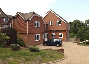 Thumbnail 4 bed detached house to rent in Swissland Hill, Dormans Park
