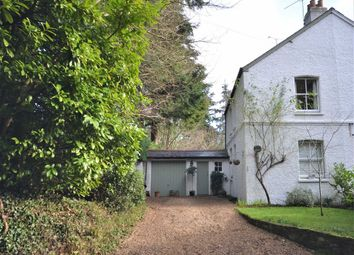 Thumbnail 3 bed cottage for sale in Hamlash Lane, Frensham, Farnham