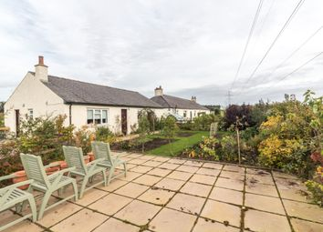 Thumbnail 3 bedroom detached house to rent in Heatherstacks, Forfar, Angus
