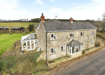 Thumbnail 4 bedroom equestrian property for sale in Stafford Cross, Colyton, Devon