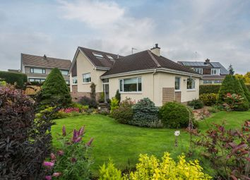 Thumbnail 5 bed property for sale in 7 Cargil Avenue, Kilmacolm