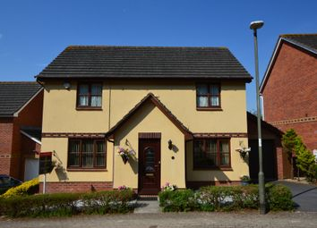 Thumbnail 4 bedroom detached house for sale in Barn Owl Close, Torquay