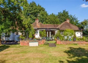 Thumbnail 5 bed detached bungalow for sale in The Avenue, Chobham, Woking, Surrey