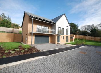 Thumbnail 4 bed detached house for sale in Meadow Rise, Northam, Nr Bideford