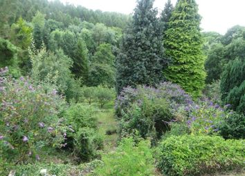 Thumbnail 3 bedroom cottage for sale in Forest Green, Walford, Ross-On-Wye