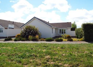 Thumbnail 4 bed bungalow for sale in Paignton, Devon, .