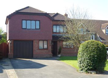 Thumbnail 5 bed detached house to rent in Treetops, Portskewett, Caldicot
